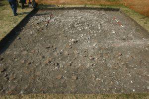 Beddington Park Excavation 2013 trench